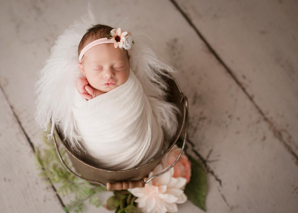 milford michigan newborn photographer 2021