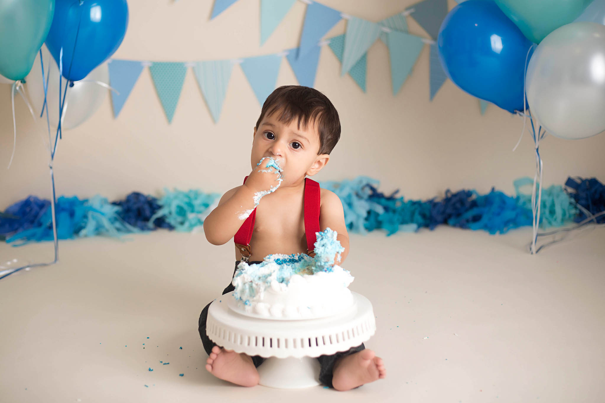 one year cake smash portraits photographer robert howell michigan