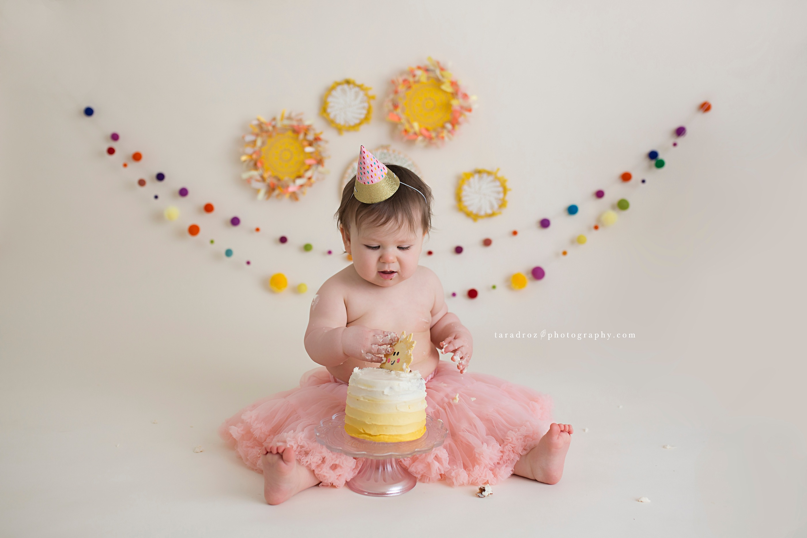 Sonne Turns ONE! { Brighton Howell Ann Arbor Cake Smash Photographer }